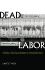 Dead Labor: Toward a Political Economy of Premature Death