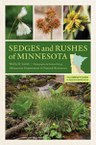 Sedges and Rushes of Minnesota: The Complete Guide to Species Identification