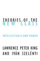 Theories of the New Class: Intellectuals and Power